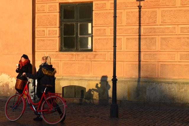 Copenhagen X
